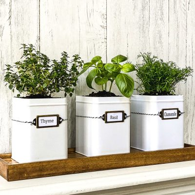 How To Make A DIY Indoor Herb Garden Kit For Your Kitchen Window