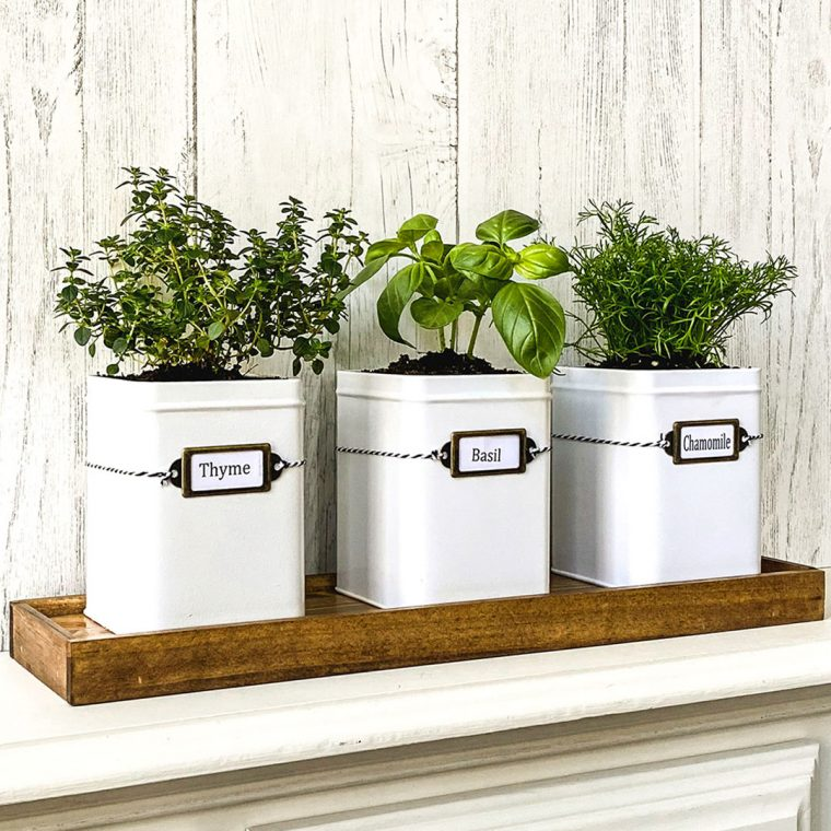 How to make a DIY indoor herb garden from tea tins and paint sticks for your kitchen window sill.