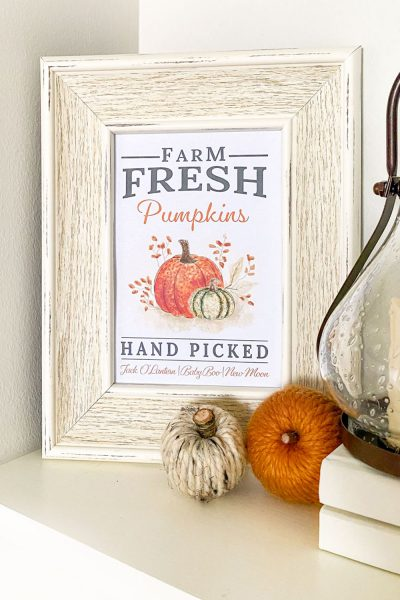 Fall pumpkin printable with a modern farmhouse style hand picked pumpkin sign for your autumn home decorating.
