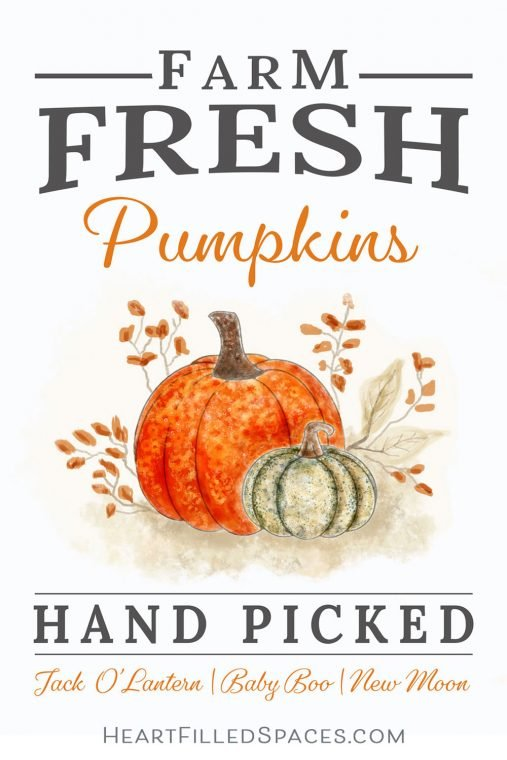 Fall hand picked pumpkins sign in a printable file format.