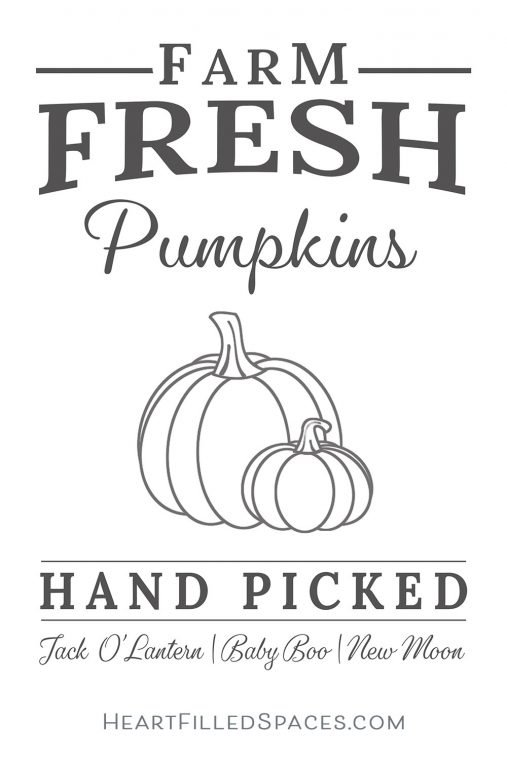 Free Pumpkin SVG with a modern farmhouse style hand picked pumpkin sign for your autumn home decorating.
