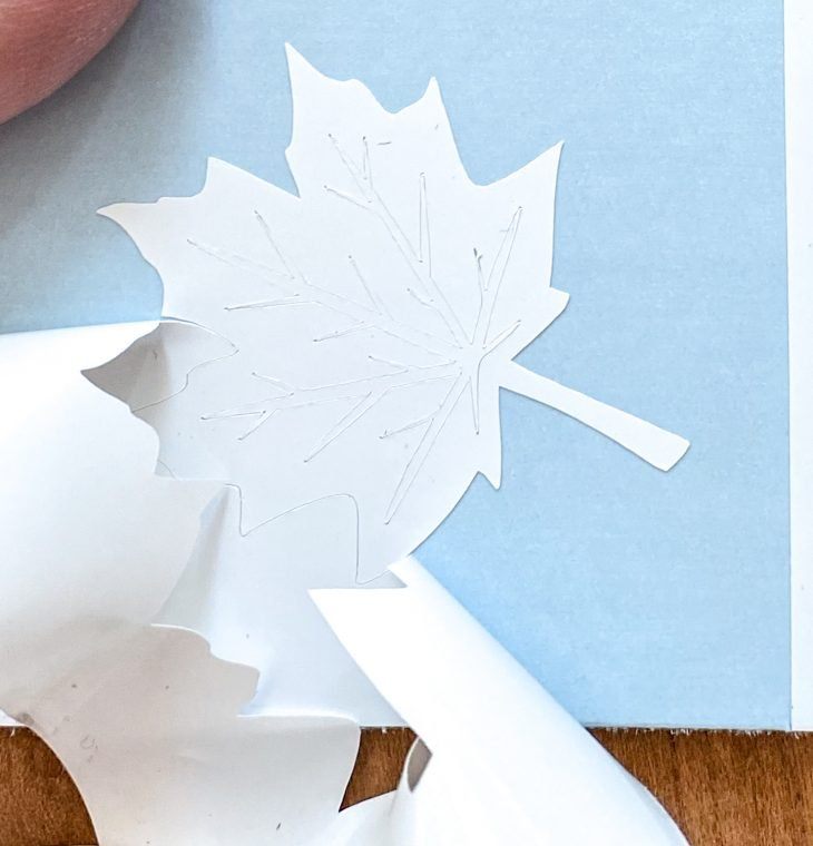 Peel away the extra vinyl from your maple leaf once it's cut out from vinyl.