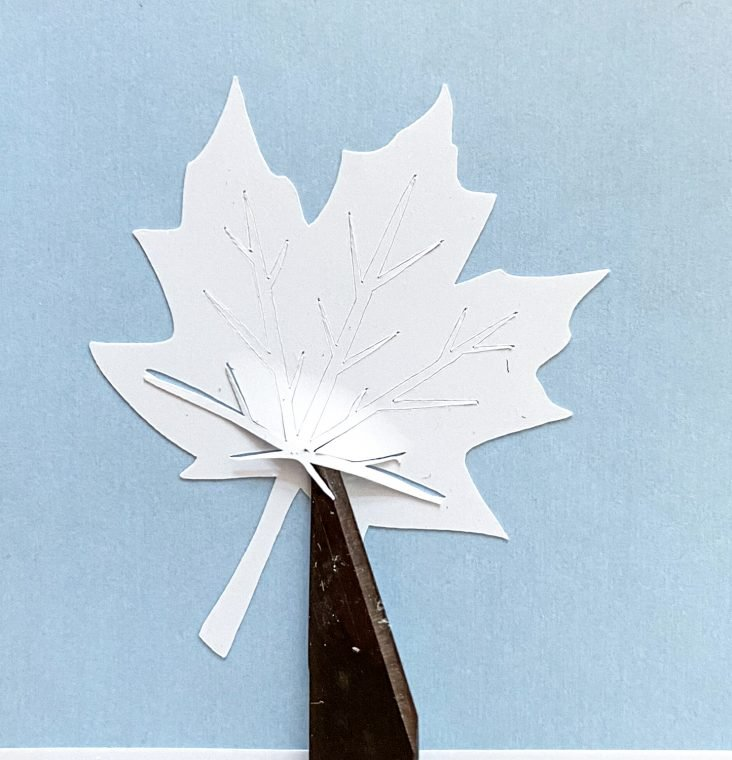 Weed out the center part of the maple leaf with a weeding tool or X-Acto knife.