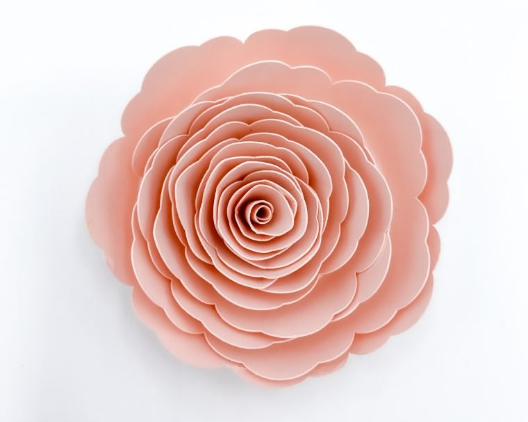 Pink paper flower.