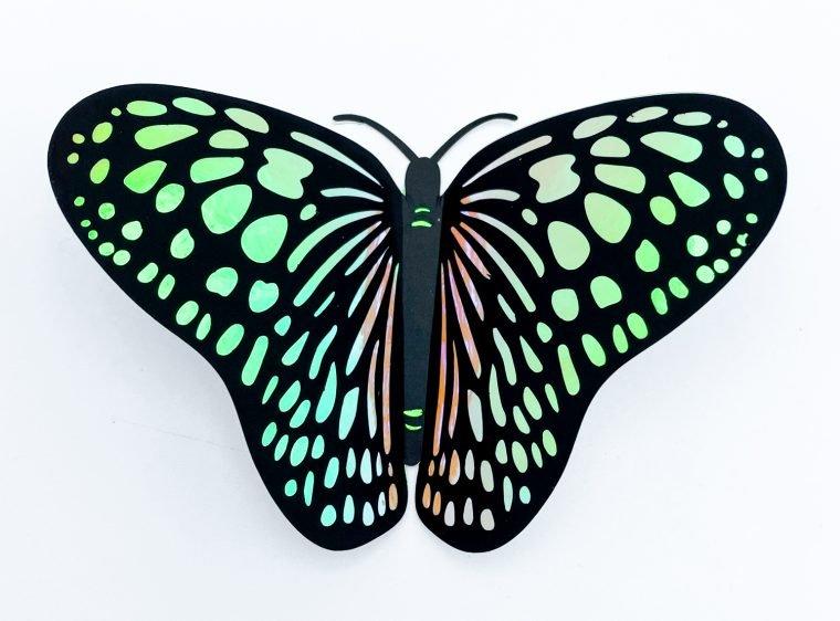 Monarch butterfly SVG file.